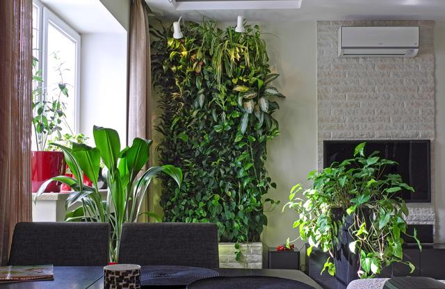 Вертикальное озеленение в офисе своими руками 27