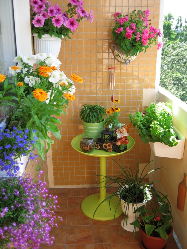 Flowers on the balcony in boxes - home decoration.