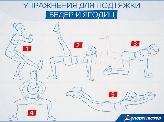 эффективные упражнения дома в картинках работе селекционеров, выведены