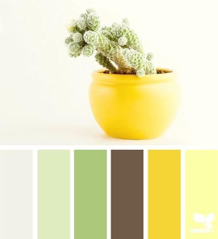 зеленый-желтый.jpg