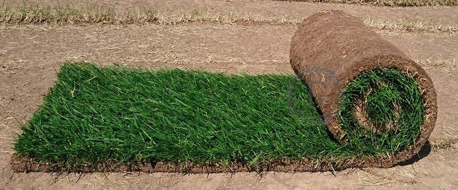 Суперский рулонный газон для лентяев!